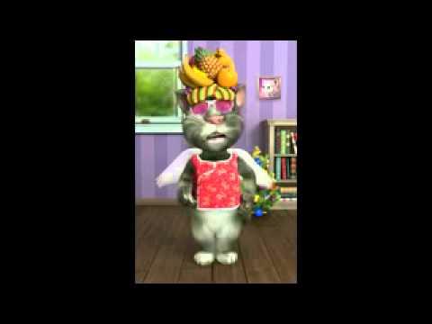 Mèo hát liên khúc nhạc chế Con Bướm Xuân  Cô Giáo xinh