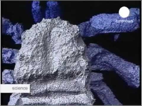 Пауку - 300 миллионов лет