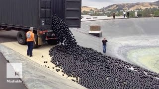 LA throws 96 million 'shade balls' at its water shortage — and it's mesmerizing | Mashable