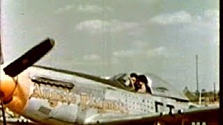 354th Fighter Group P-51 Mustang PioneersColor-1945--New