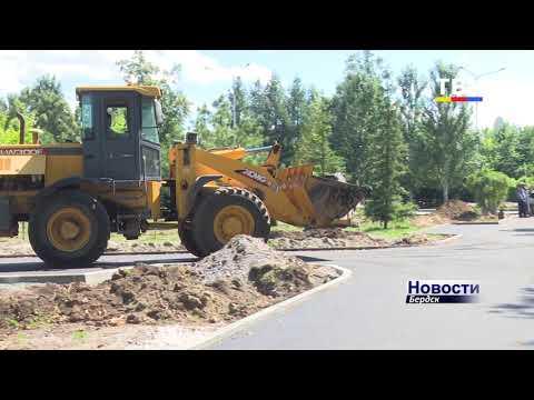 Осенью в городском парке Бердска планируют высадить 450 деревьев