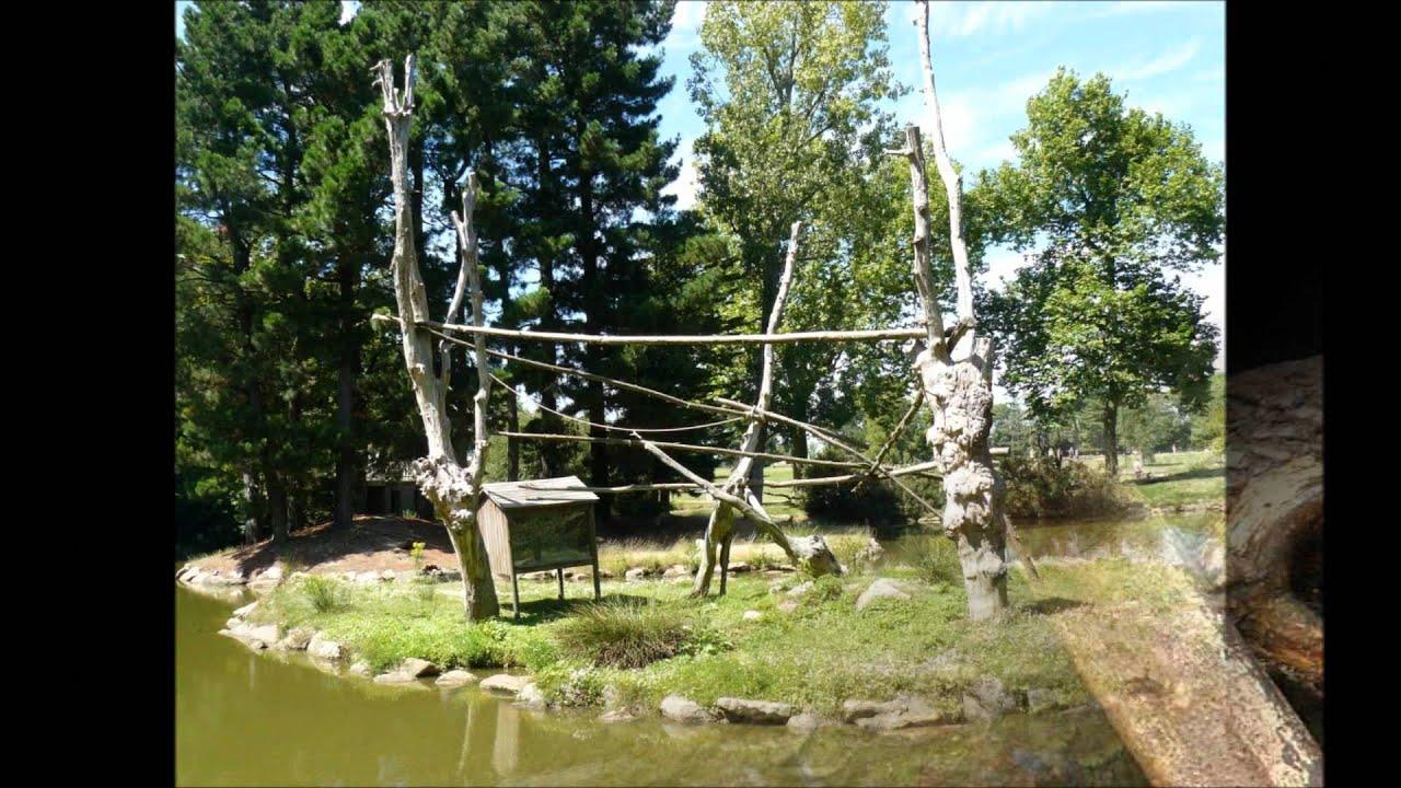 Le jardin exotique folembray youtube for Jardin youtube