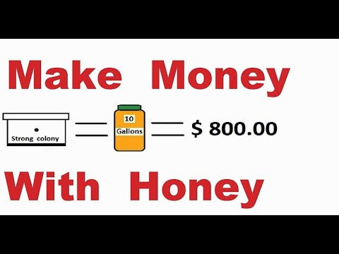 How much money you can make with honey bees. Beekeeping business. Natural raw honey production.
