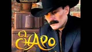 Se fue (audio) Chapo de Sinaloa