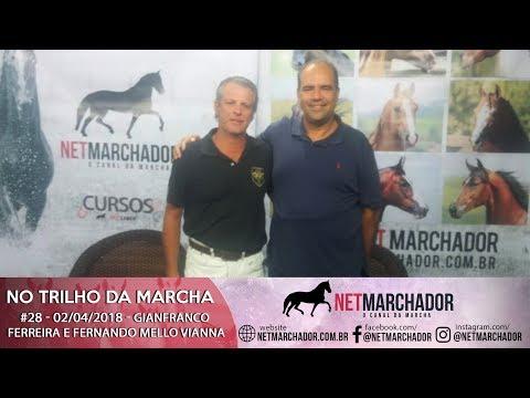 #28 NO TRILHO DA MARCHA COM GIANFRANCO FERREIRA E FERNANDO MELLO VIANNA MANGALARGA MARCHADOR