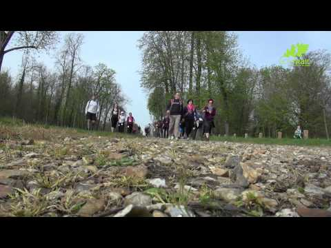 Retour sur l'Eco-Trail Paris 2014