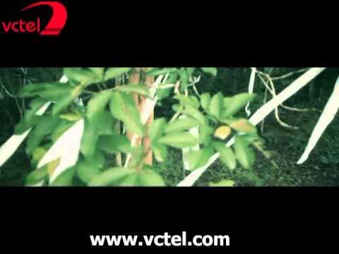 Ký ức - Hồ Quang Hiếu ft Tuyết Vân Hà