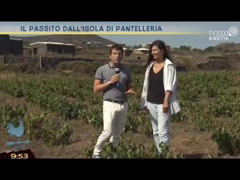 Il passito dall'isola di Pantelleria