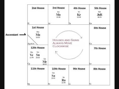 Reading the South Indian Astrology Chart
