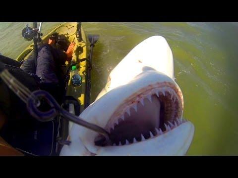Pêche en kayak : Quand tout va mal