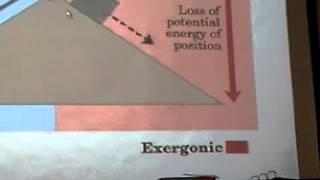 Cuarta clase de bioquimica - Bioenergía - 27-08-2012