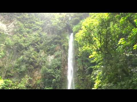 CARIBBEAN Meditation Scene - Victoria Waterfalls - DOMINICA - w/Music
