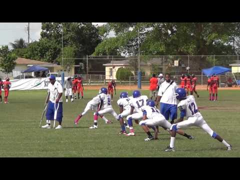 Miami Dolphins Youth Programs' - Dolphin Blitz