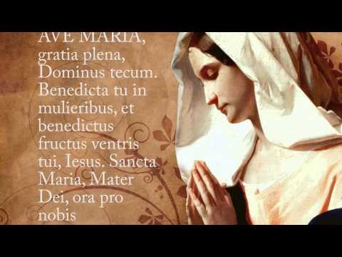 ave maria dating catholic Catholic singles groups you are here:  look around for information on how to plan a catholic wedding, dating tips, online dating websites, .