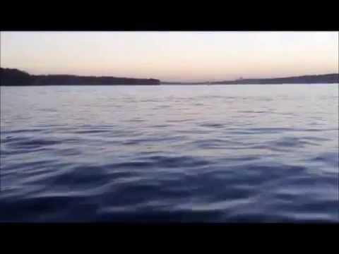 Offshore Game Fishing Sydney Australia