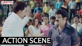 Birthday Dialogue Simha Movie Dialogues