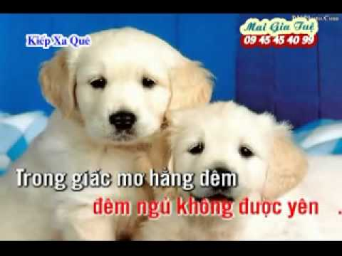[NHAC SONG KARAOKE] KIEP XA QUE (beat co hang xom) FLV