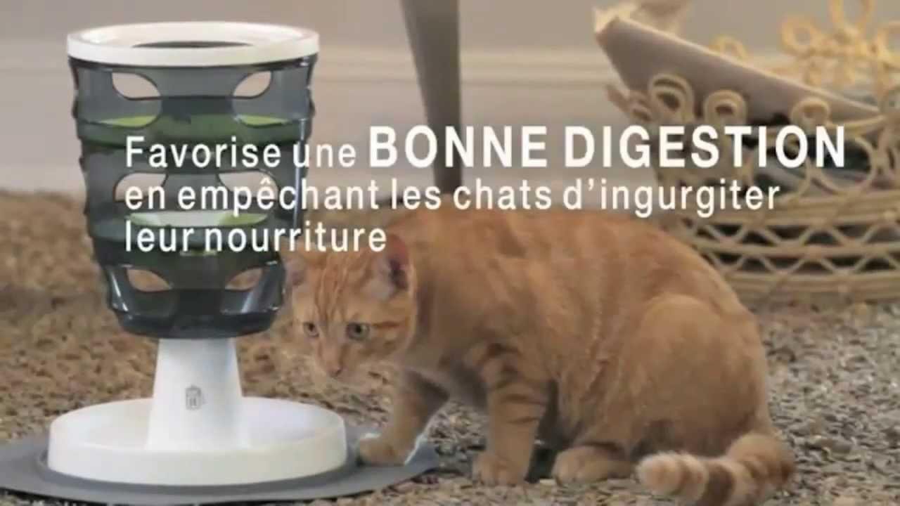 jeux et fontaine pour chat catit jardinerie truffaut tv youtube. Black Bedroom Furniture Sets. Home Design Ideas