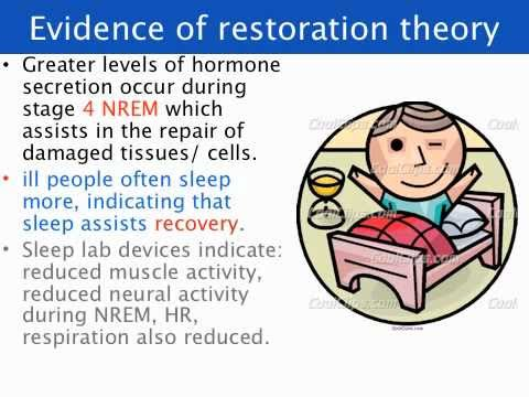 restoration theory of sleep essay Home a level and ib psychology outline and evaluate restoration theory restoration theory proposes that sleep is essay plan for restoration theory of.