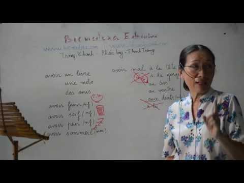 Bài 16: Cách nói sở hữu đồ vật và biểu thị cảm giác trong tiếng Pháp - verbe