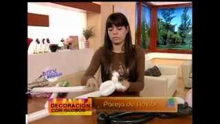 Roberto Poletto - Bienvenidas TV - Pareja de Novios view on youtube.com tube online.