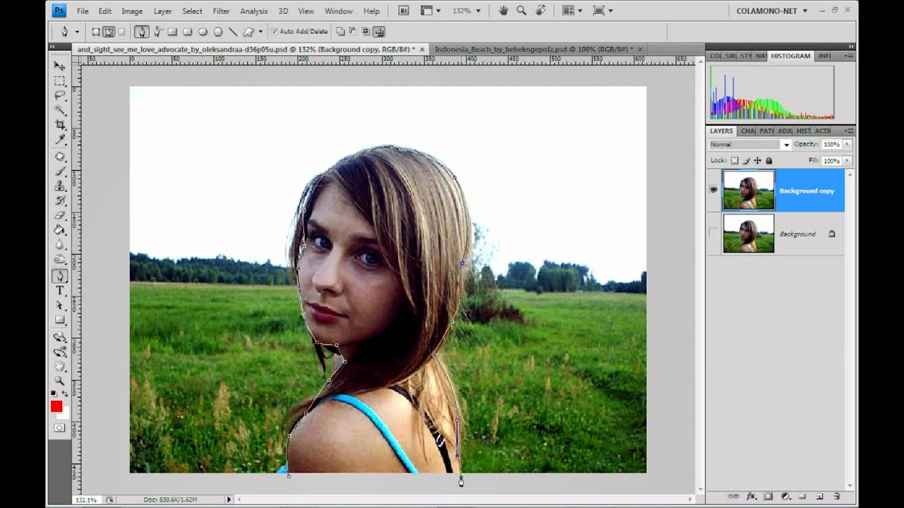 how to change background in picasa 3
