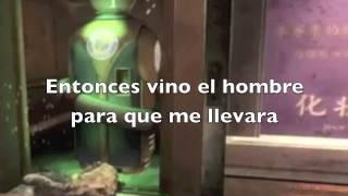 TODAS LAS CANCIONES LAS PERKS DE CALL OF DUTY ZOMBIES HD