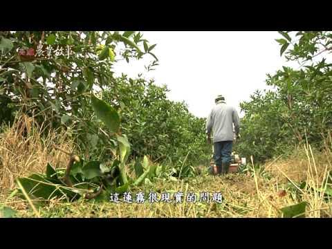 高雄農業故事館-蓮霧(影片長度:16分55秒)