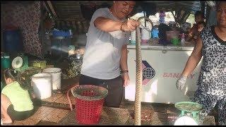 Khám phá đặc sản thịt chuột đồng nướng - Fried mouse