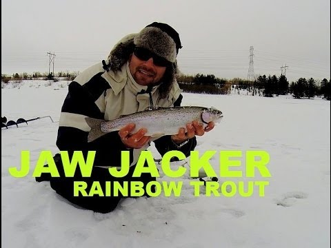 Best Rainbow Trout Ice fishing TIPS with Jaw Jacker