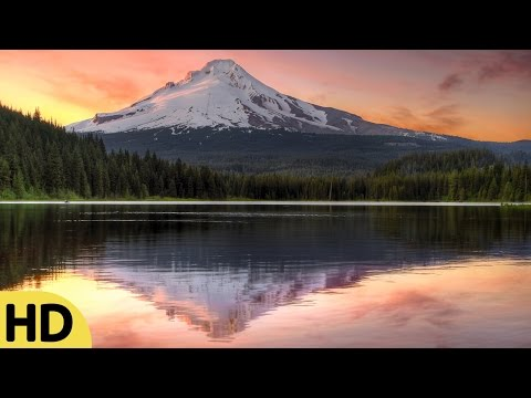 Relaxing Flute Music, Music for Stress Relief, Relaxing Music, Meditation Music, Soft Music, ☯3065