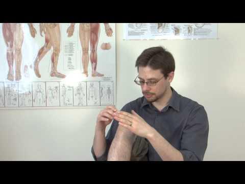 Hip & Leg Acupressure & Self-Massage