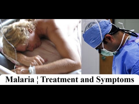 Malaria ¦ Symptoms and Treatment