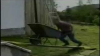 Los Videos Mas Estupidos De El Mundo LOQUENDO