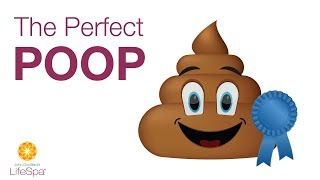 The Perfect Poop