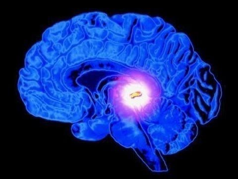 Khám Phá Gây Sửng Sốt về Con Mắt Thứ Ba | Khoa Học Huyền Bí