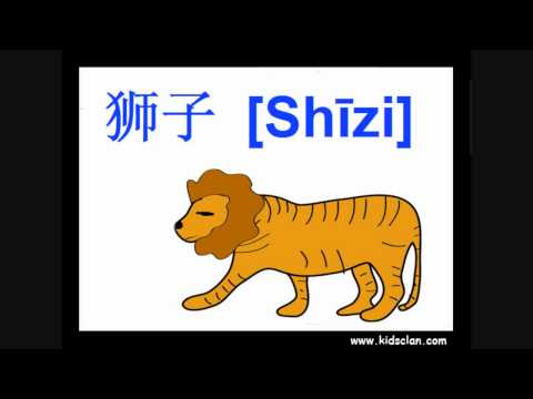 Chinese flashcards for beginners. Animals.
