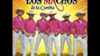 El Sol No Regresa Los Machos De La Cumbia 2013 Lo
