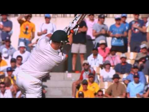 Tribute to Brad Haddin - A Fighting Cricketer (HD)