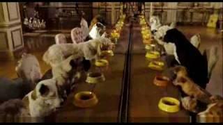 Um Hotel Bom Pra Cachorro Trailer Oficial Dublado Em