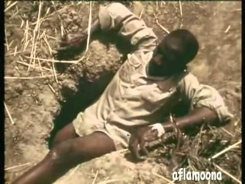 Dalam sebuah video yang diunggah di situs Youtube tampak beberapa pria yang tengah mencoba menangkap ular phyton. Salah satu dari orang tersebut merelakan kakinya sebagai umpan.