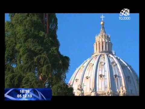 Ecco l'albero di Natale di piazza S. Pietro