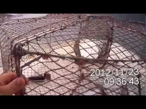 Ribolov sa sklopivom vršom. Fishing with foldable fish trap. Nassa pieghevole.