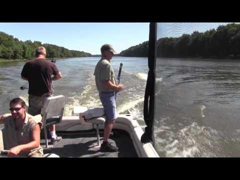 Bowfishing Jumping Carp