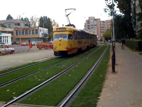 Gazonul dintre sinele de tramvai din Oradea