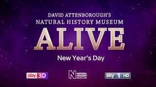 David Attenborough: Natural History Museum Tour in 3D: Trailer