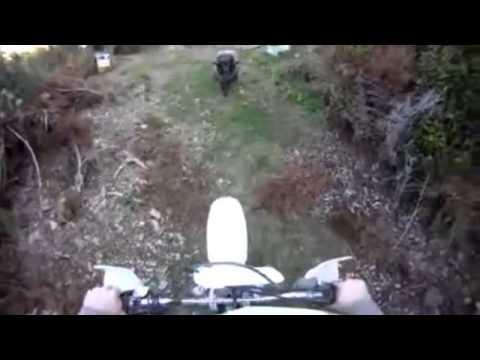 Битва: мотоциклитст против барана
