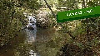 Lavras