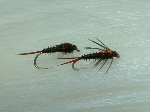 Tying the Mahogany MayFly Nymph by Davie McPhail.