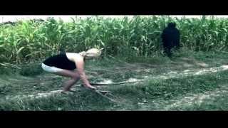 Vizza - Czarna fura